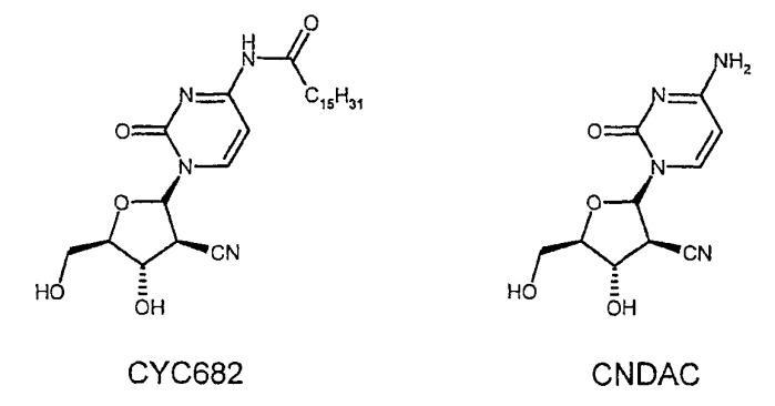 Суспензии кристаллических пиримидиновых нуклеозидных производных в капсулах