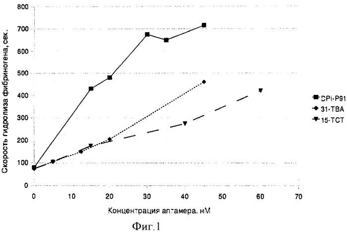 Днк-аптамеры, ингибирующие тромбин, и способ стабилизации их структуры