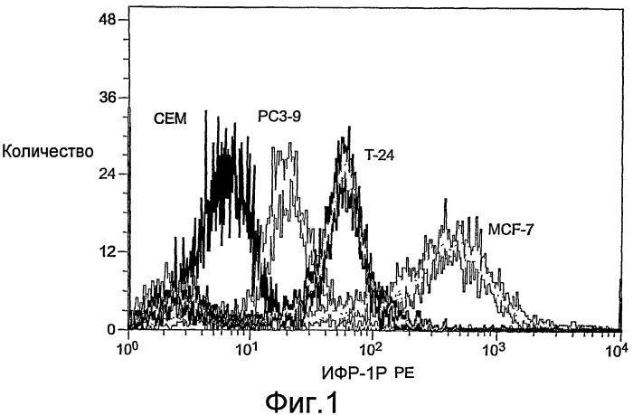 Анализ циркулирующих опухолевых клеток