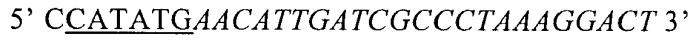 Агенты и способы, основанные на применении домена eda фибронектина