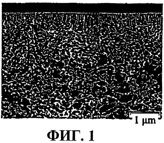 Изопористая мембрана и способ ее получения