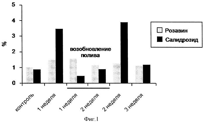 Способ повышения содержания гликозидов коричного спирта и салидрозида в растениях rhodiola rosea l.