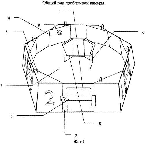 Проблемная камера для измерения индивидуального уровня когнитивных способностей крыс