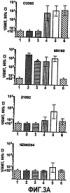 Вакцины с использованием везикул на основе gna 1870 широкого спектра действия для профилактики заболеваний, вызываемых neisseria meningitidis
