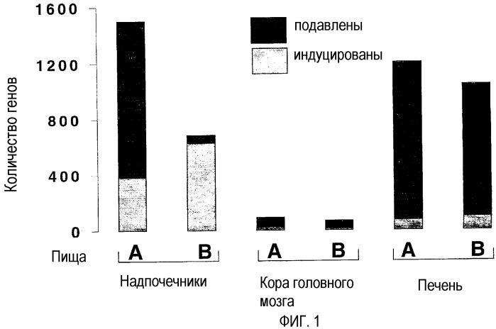Применение антиоксидантов для модуляции генов