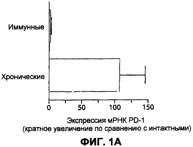 Способ и композиции для лечения персистирующих инфекций