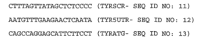 Способ введения молекулы пнк, конъюгированной с положительно заряженным пептидом, в цитозоль и/или ядро фотохимической интернализацией(pci)