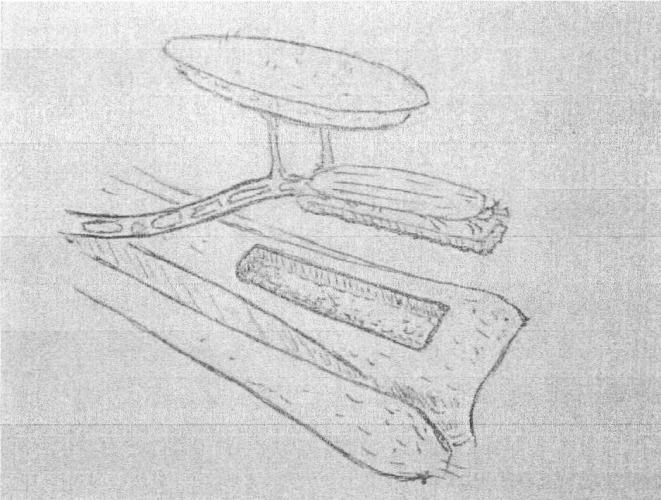 Свободный реваскуляризируемый передний большеберцовый кожно-костный аутотрансплантат и способ его забора