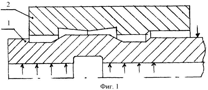 Способ закрепления теплообменных труб в трубных решетках