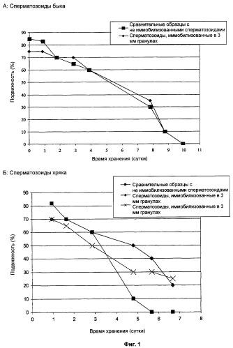 Консервирование и контролируемая доставка/высвобождение сперматозоидов