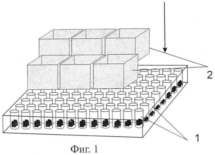 Способ изготовления вакцины для лечения адэнокарциномы эрлиха в эксперименте