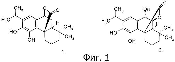 Применение карнозола и/или розманола для повышения активности нейрорецепторов