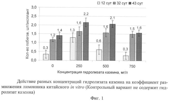 Питательная среда для микроразмножения лимонника китайского (schisandra chinensis (turcz.) baill.) в условиях in vitro