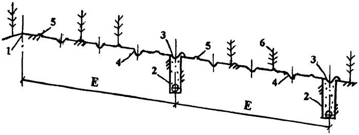 Способ противоэрозионного дренажа склоновых земель