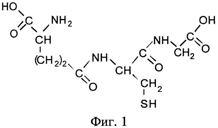 Способ определения глутатиона в биологически активных добавках методом катодной вольтамперометрии