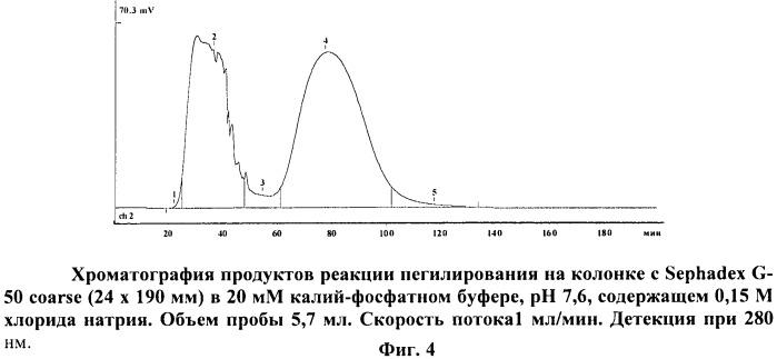 Способ получения субстанции рекомбинантной l-аспарагиназы erwinia carotovora