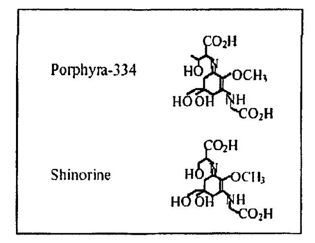 Экстракты aphanizomenon flos aquae и питательные, косметические и фармацевтические композиции, содержащие их