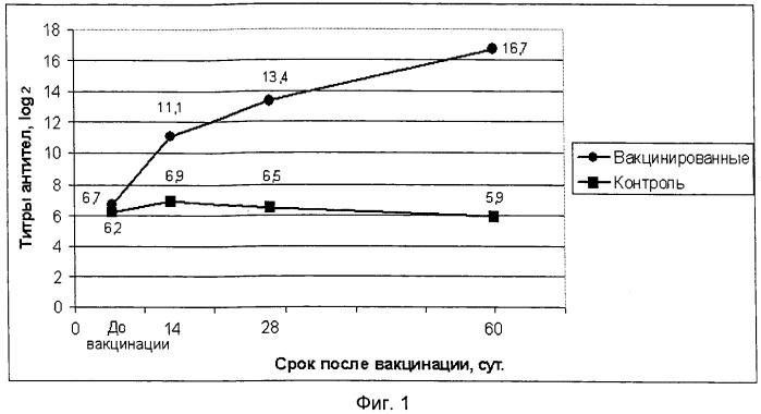 Вакцина ассоциированная против ньюкаслской болезни птиц, инфекционного бронхита кур, синдрома снижения яйценоскости-76, инфекционной бурсальной болезни и реовирусного теносиновита птиц инактивированная эмульсионная