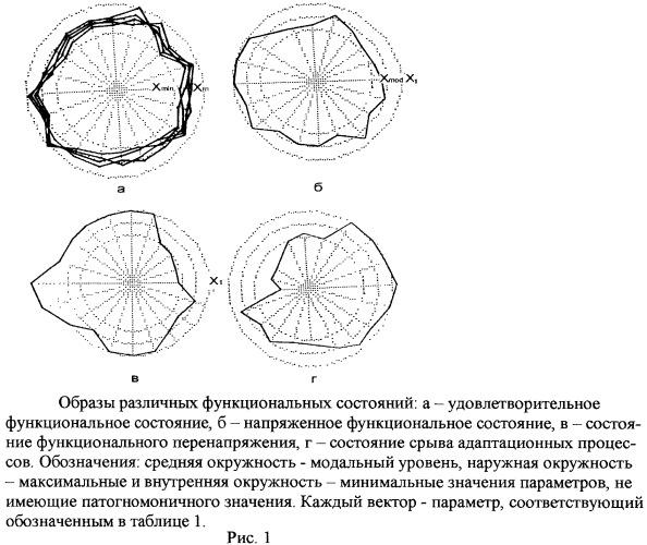 Полипараметрический способ диагностики функционального состояния человека и индивидуального адаптационного синдрома