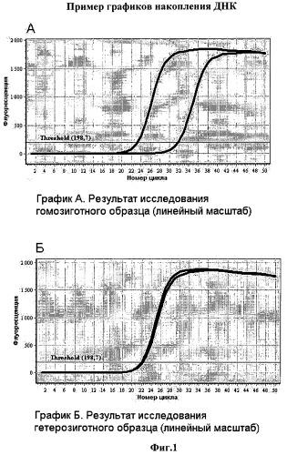 Способ определения генотипа человека по полиморфизму в позиции 5382 гена brca1 (5382insc)