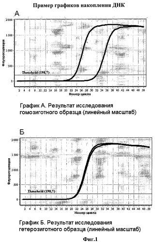 Способ определения генотипа человека по полиморфизму в позиции 185 гена brca1 (185delag)