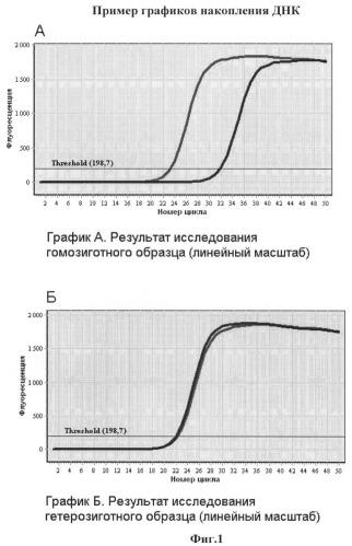 Способ определения генотипа человека по полиморфизму в позиции 2579 гена brca1 (rs4986850)