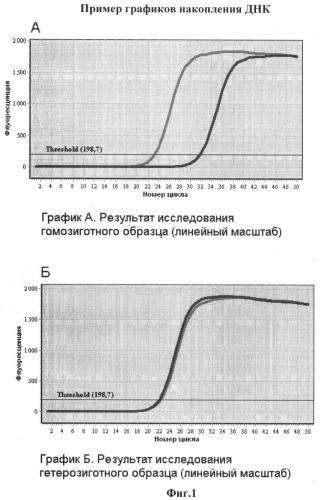 Способ определения генотипа человека по полиморфизму в позиции 6174 гена brca2 (617delt)