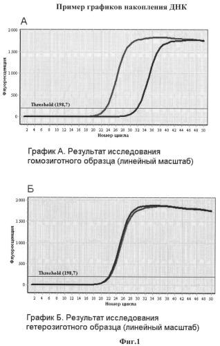 Способ определения генотипа человека по полиморфизму в позиции 4343 гена brca1 (rs1799950)