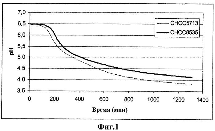 Способ получения штамма lactobacillus delbrueckii subsp. bulgaricus c низкой степенью постпродуцирования молочной кислоты, полученные текстурирующие штаммы (варианты), молочный продукт и способ его получения с использованием текстурирующих штаммов