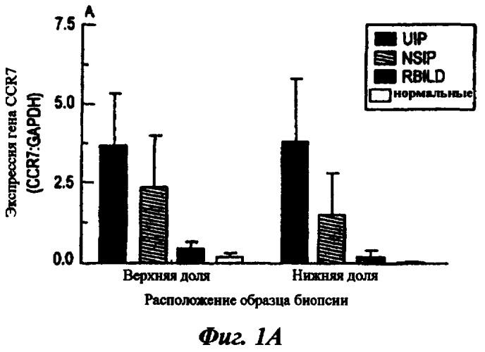 Материалы и способы лечения хронических фиброзных заболеваний