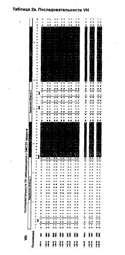 Анти-gm-csf антитела и их применение