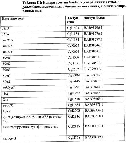 Рекомбинантные микроорганизмы, продуцирующие метионин