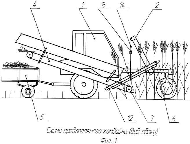 Комбайн для уборки тростника преимущественно на ровных участках