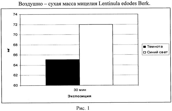 Способ выращивания мицелия lentinula edodes berk.