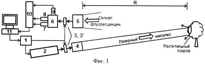 Способ дистанционного определения функционального состояния фотосинтетического аппарата растений