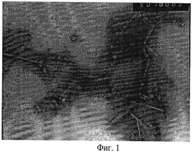 Способ получения водных дисперсий сферических наночастиц из тритерпеноидов коры березы