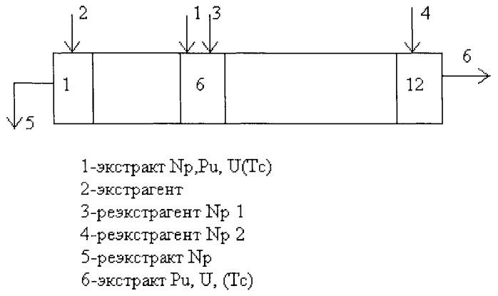 Способ выведения нептуния при фракционировании долгоживущих радионуклидов