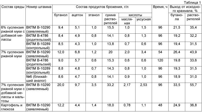 Штамм бактерий clostridium acetobutylicum - продуцент н-бутанола