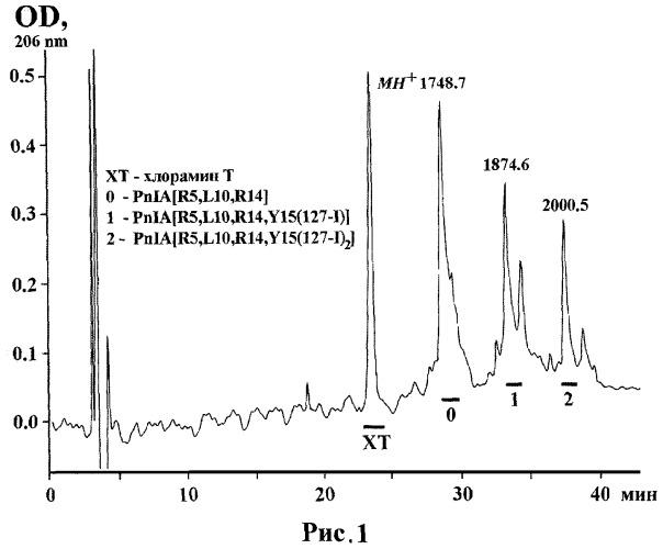 Пептид, имеющий высокое сродство к альфа7 типу никотинового ацетилхолинового рецептора человека, и его применение
