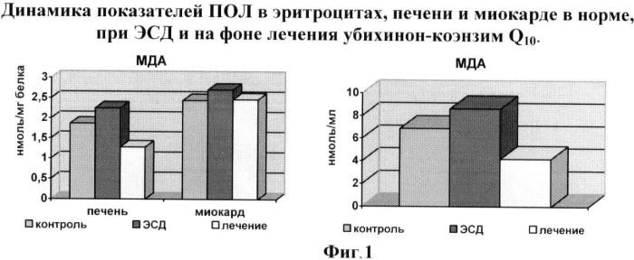 Способ диагностики и коррекции эндотелиальной дисфункции при сосудистых осложнениях аллоксанового диабета в эксперименте