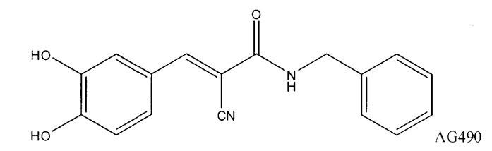 Биологически доступная для перорального применения кофейная кислота, относящаяся к противоопухолевым лекарственным средствам