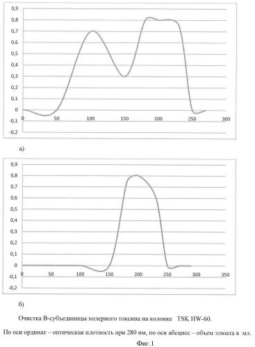 Способ получения очищенной в-субъединицы холерного токсина из рекомбинантного штамма vibrio cholerae