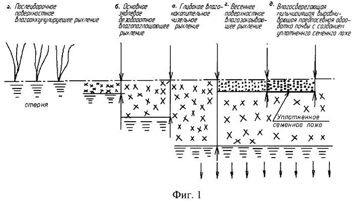 Способ обработки почвы