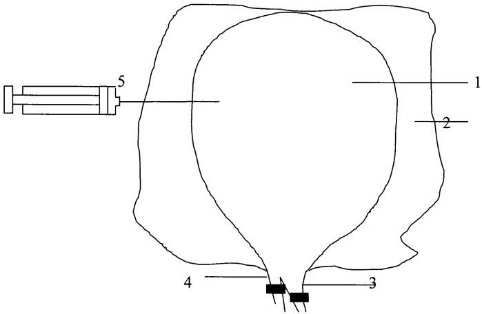 Способ моделирования острого гангренозного холецистита