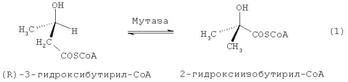 Способ ферментативного получения 2-гидрокси-2-метилкарбоновых кислот