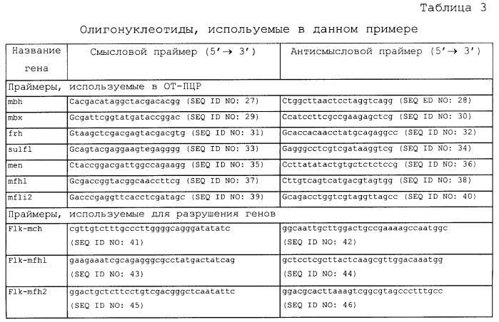 Новая гидрогеназа seq id no:5, очищенная из thermococcus onnurienus na1 с помощью моноokcида углерода, кодирующие ее гены, и способы получения водорода с использованием микроорганизма, имеющего указанные гены