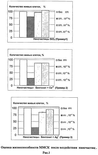 Способ оценки влияния наночастиц на жизнедеятельность клеточных культур