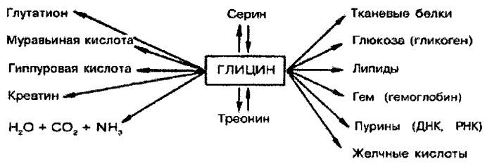 Комбинация в виде ородиспергируемой формы с терапевтическим действием на возбуждающие и тормозные функции нервной системы (варианты)