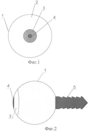 Глазной кадаверный протез