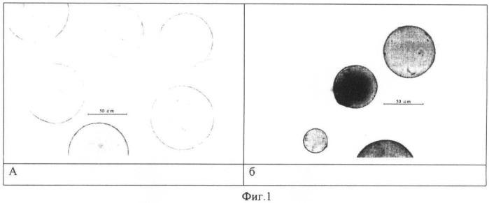 Контрастное средство для магнитно-резонансной томографии